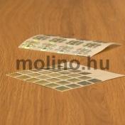 Hologram matrica 03