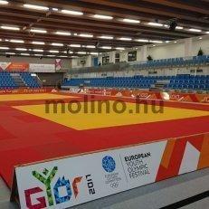 Kezdetét vette az Európai Ifjúsági Olimpiai Fesztivál