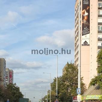 MOL BP 0303 01
