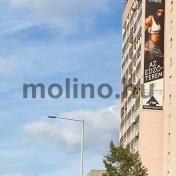 MOL BP 0303 02
